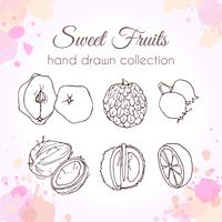 Set of hand drawn fresh fruits