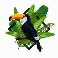 Ilustración de vector con hojas tropicales y pájaro tucán en una rama