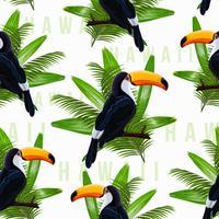 Vektor sömlösa mönster med tropiska löv och fågel toucan på en gren på transparent bakgrund.