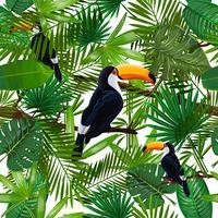 Padrão sem emenda de vetor com folhas tropicais e pássaro Tucano em um galho em fundo transparente.