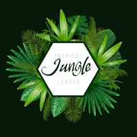 Tropical leaves around the shape on dark background. vector