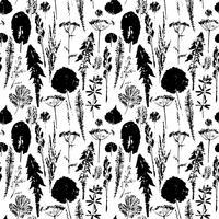 Modèle sans couture botanique abstraite. Fond à base de plantes de vecteur.