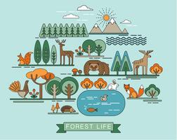 Vector illustration of forest life.