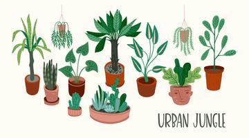 Urban Jungle. Vectorillustratie met kamerplanten.