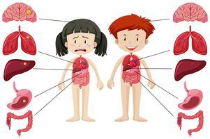 Tjej och pojke med olika hälsosamma och ohälsosamma kroppar