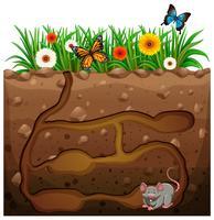 Agujero de la rata en el jardín