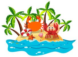 Crabs live on island vector