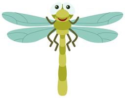 Grüne Libelle auf weißem Hintergrund