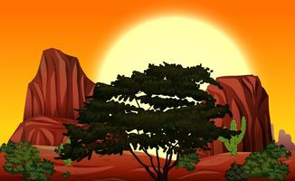 En skön natur vid solnedgången