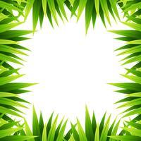 Bordure nature feuille verte