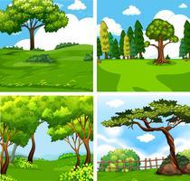 Cuatro diferentes escenas de la naturaleza verde.