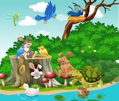 Lindos animales que viven junto al río.