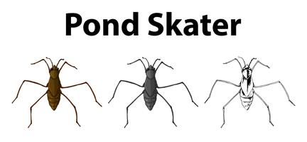 Doodle personaje para skater de estanque.