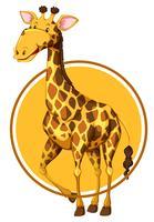 Girafa na bandeira do círculo