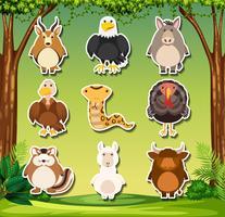 Conjunto de adesivos de animais selvagens