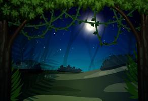 Donkere nacht in het bos