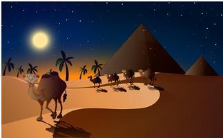Kamelen die in de woestijn bij nacht lopen