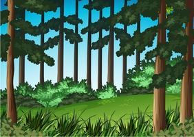 Fundo de paisagem de cena de madeira