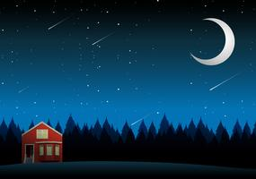 A rural house landscape at night