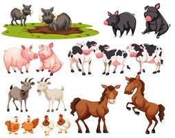 Conjunto de animais no fundo branco