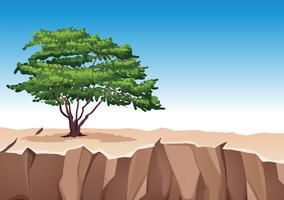 Árvore na montanha de pedra