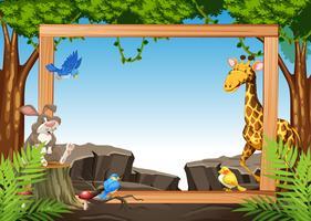 Wild animal on nature frame