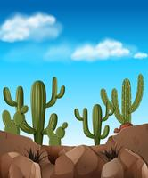 Desert scene with cactus plants
