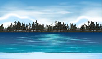Escena del lago con bosque de pinos en el fondo