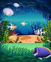 Poisson nageant sous l'océan