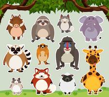 Diseño de etiqueta para animales salvajes en el campo.