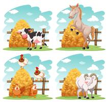 Animales de granja en la granja