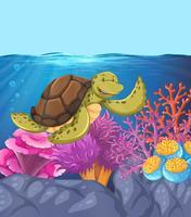 Cena de Recife subaquático de tartaruga feliz