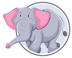 Elefante na bandeira do círculo