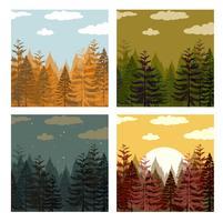 Bosque de pinos en cuatro colores.