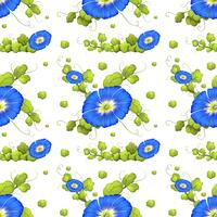 Seamless background with blue morning glory flowers vector