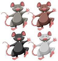 Cuatro ratones