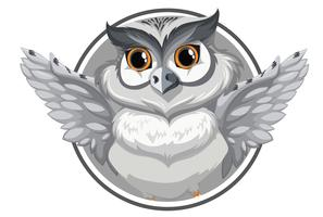 A grey owl banner vector