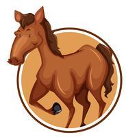 Cavalo no banner do círculo