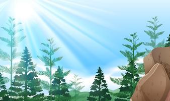 Achtergrondscène met bomen op berg