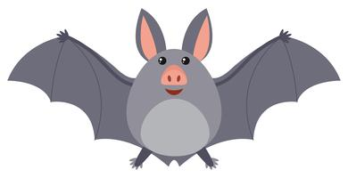 Murciélago con alas grises