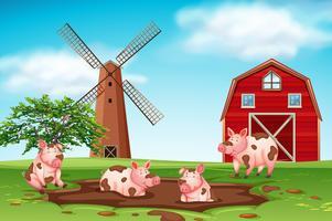 Cerdos jugando en la escena de la granja de barro