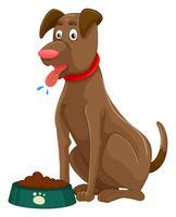 Cachorro marrom com comida seca na tigela