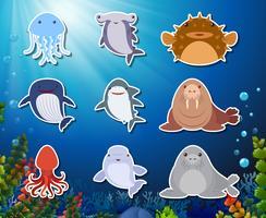 Conjunto de autocolante de animais submarinos