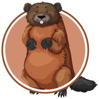 Beaver in circle banner vector