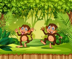 Macaco brincalhão na selva