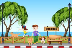 Gente en el parque para perros con sus perros.