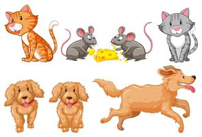 Set of dogs and cats vector