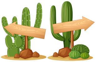 Pilskyltar på kaktusplantor