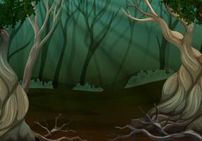 Escena de bosque profundo con muchos árboles