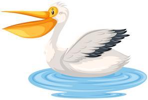 Um personagem pelicano na água